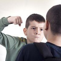 Aggressive Child Behavior - Fighting in School and at Home