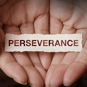 Teaching Perseverance: Let Kids Overcome Their Own Obstacles